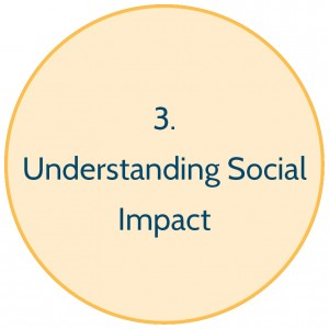 Stage 3 Understanding Social Impact